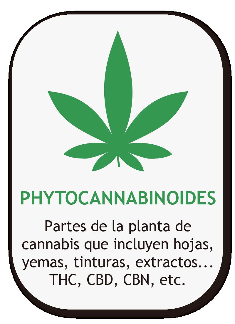 Phytocannabinoides